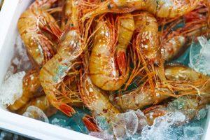 【水産女子×魚がしコンシェルジュコラボ】 エビ海老フェスティバル @ 築地 レストラン「ボン・マルシェ」